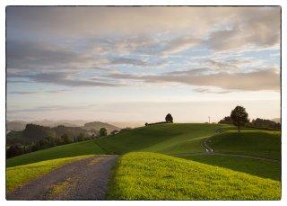 Postkarte: Weg vom Kapf zum Freudenberg