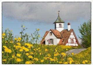 Postkarte: Frühling bei der Falkenburg