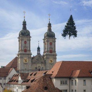 Faltkarten: Christbaum im Anflug, Kloster St.Gallen