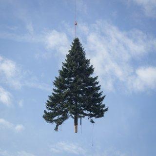 Faltkarten: Fliegender Weihnachtsbaum