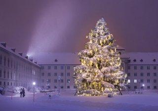 Faltkarte: Den Christbaum bestaunen auf dem Klosterplatz St.Gallen