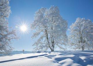 Faltkarten: Frisch verschneiter Freudenberg, St.Gallen