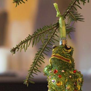 Weihnachtskarte: Weihnachtsschmuck Frosch