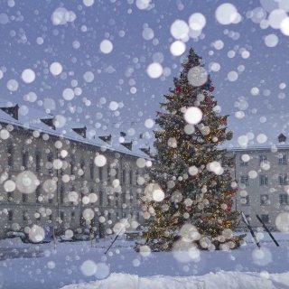 Weihnachtskarte: Christbaum Klosterplatz St.Gallen bei Schneefall